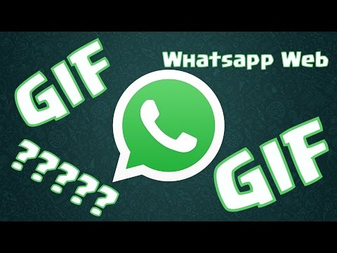 Contacts GIFs - Find & Share on GIPHY