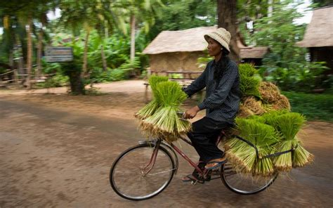 Cambodia and Vietnam on a family cycling trip - Telegraph