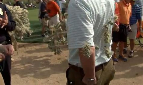 Ouch! McIlroy shot leads to jumping cactus fan attack