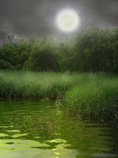 Animated Green Grass And Moon Wallpaper